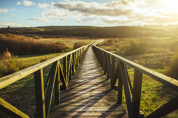 A wooden bridge spanning across a grassy field leading towards a sunny backdrop